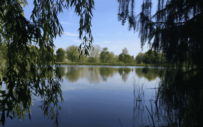 Bodenham Arboretum – Private Hire