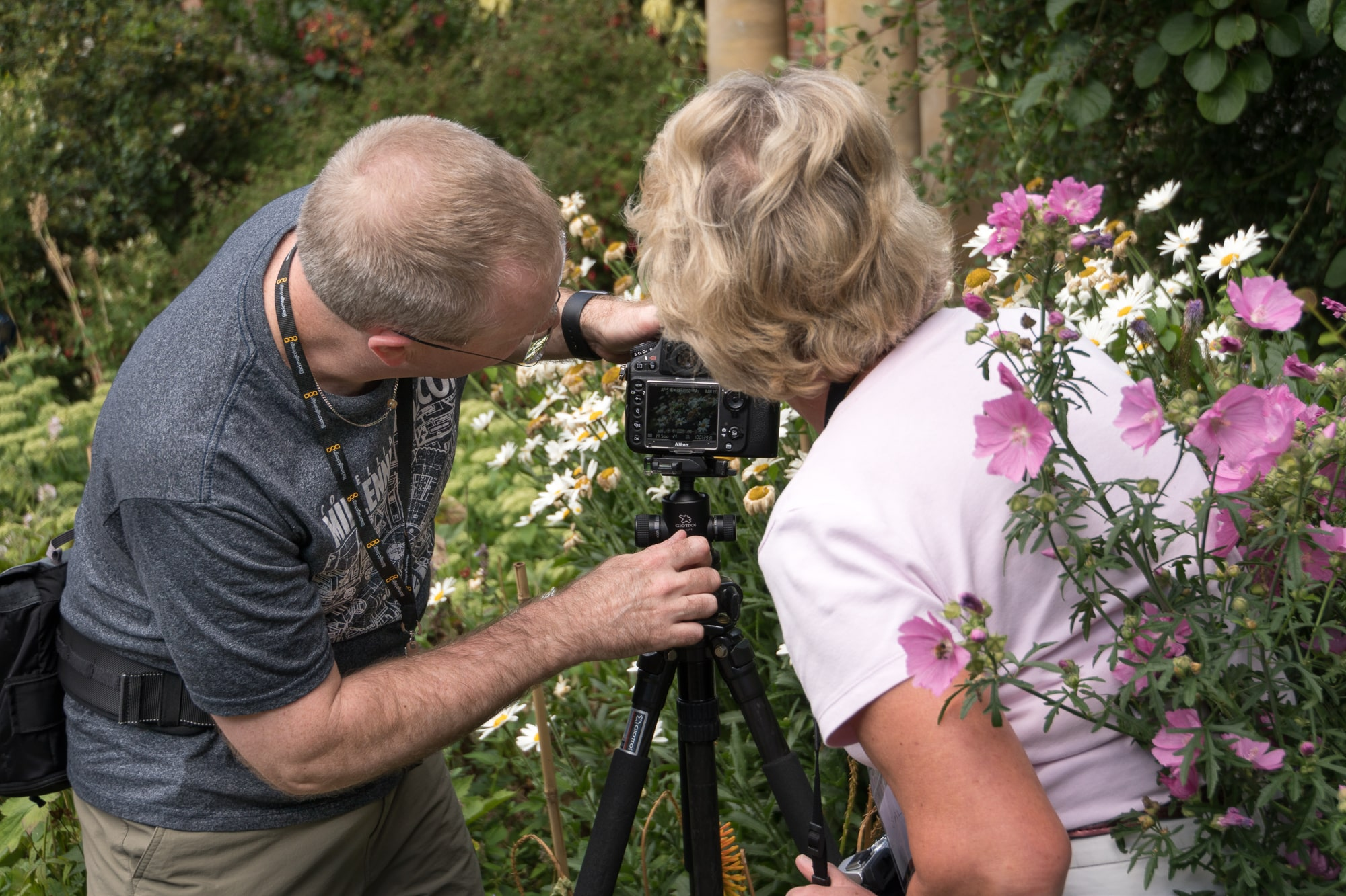 7_July 29th Spetchley Photo Workshop 2016 © Clive Haynes-2