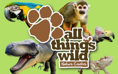 All Things Wild – Dino Diner