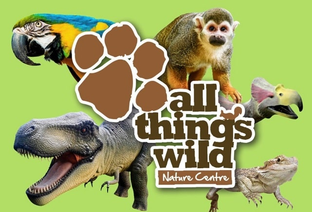 all-things-wild