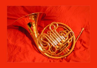 Worcester Horn Day