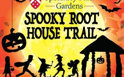 Spooky Root House Trail