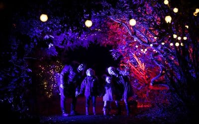 Enchanted Witley Court