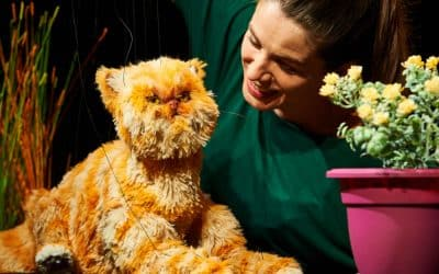 Sourpuss – Shadow Puppetry Workshops