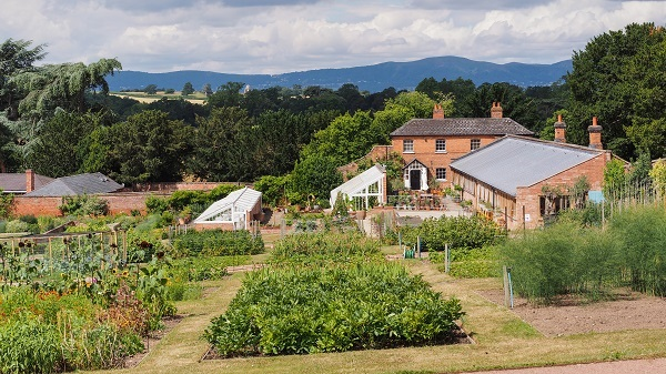 The Walled Gardens at Croome Court Re-opens to Visitors at Easter