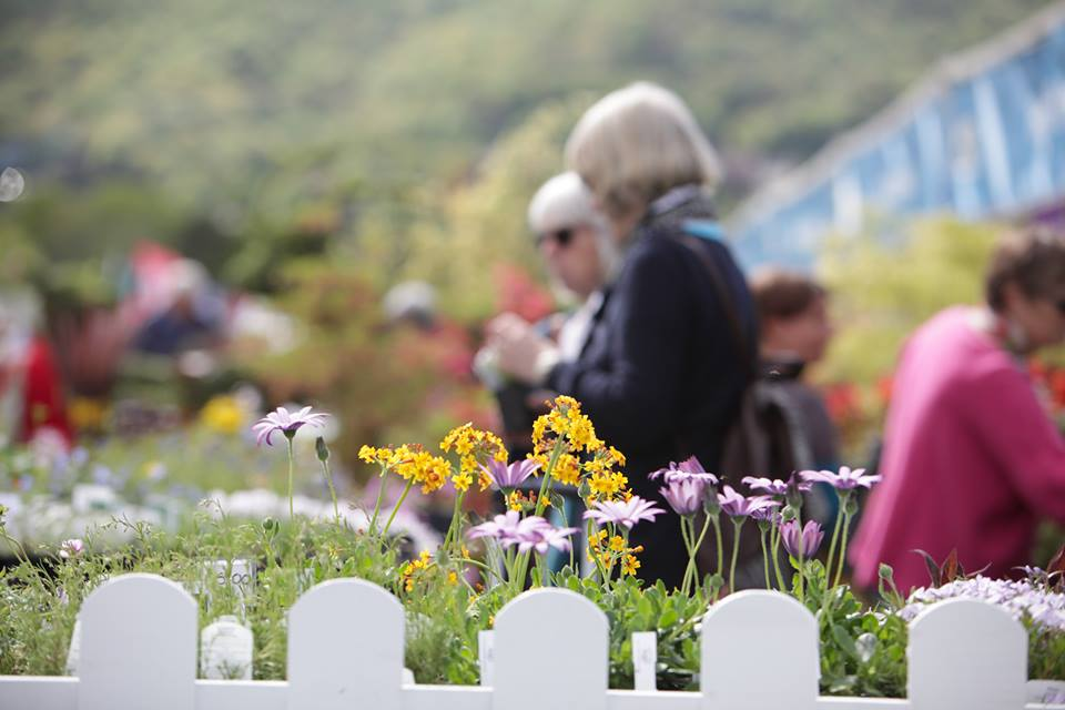 Celebrity Spotting at RHS Malvern Spring Festival May 9-12